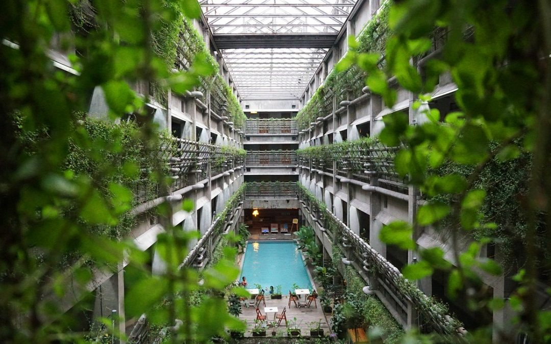 Hotels Launch New, Meaningful Sustainability Strategies